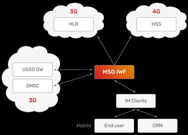 JSC Ingenium - Technology: Interworking Function - MSG